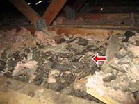 Attic Defects