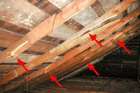 cracked rafter